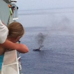 My cruise ship intercepts a raft of Cuban refugees [WATCH]