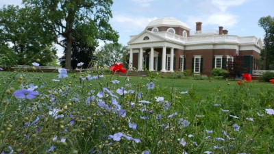 Flowers at Monticello